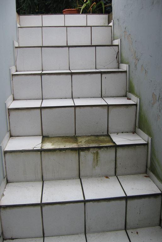 Kellertreppe saniert mit Steinteppich - endlich mehr als nur eine Katzentreppe